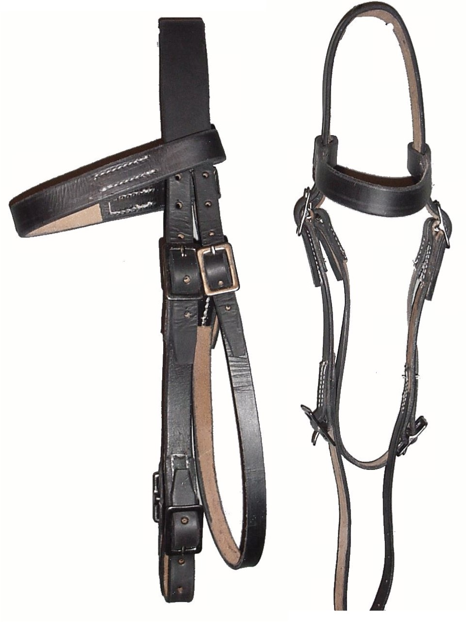 6 buckle headstall